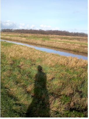 Lopen door de polder